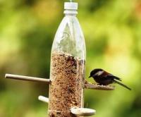 Ptačí krmítko z PET láhve