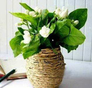 papírová váza, tvoříme, jak udělat vázu, jak uplést košík, recyvěci, pedig, návod