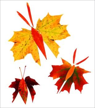 obrázek z listí, tvoříme s dětmi, pravovní výchova, aktivity pro děti podzimní