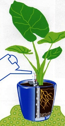 samozavlazovací květináč, jak vyrobit