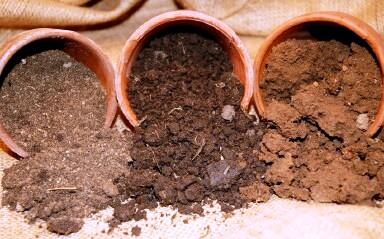 půda, humus, typy půdy, jílovitá půda, píščitá půda ...