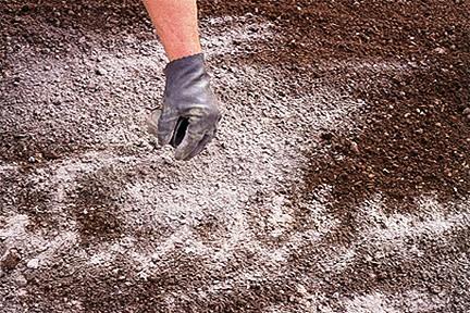 Vapněni půdy, kyselost půdy